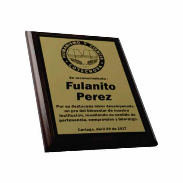 placa de reconocimiento en madera con bronce laserable 5