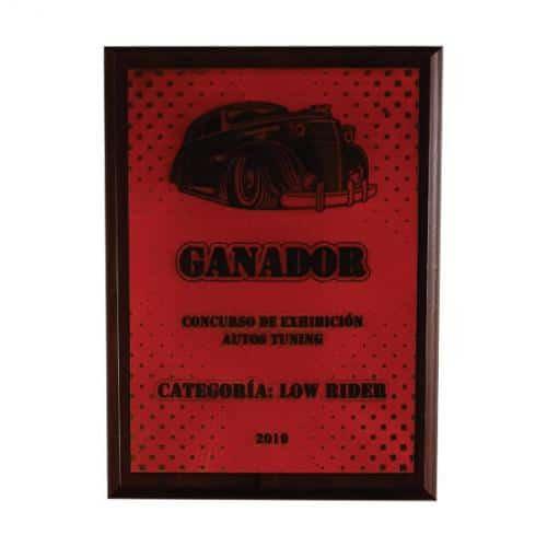 placa de reconocimiento en madera con cuero grabado laser 4