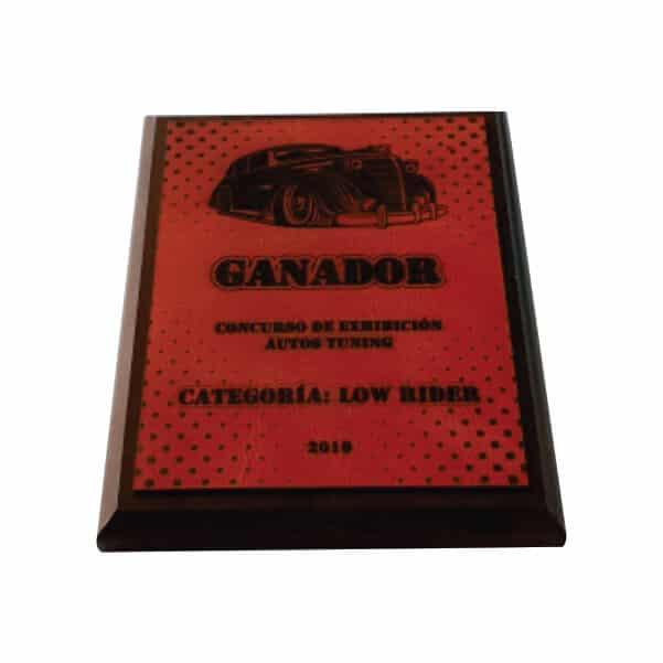 placa de reconocimiento en madera con cuero grabado laser 5